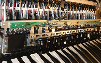 accordeon midi